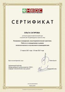 Сертификат Ольги Сагировой